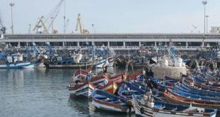Ports de pêche : L'ONP n'est plus le seul global Operator des ports