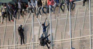Ceuta : 400 migrants franchissent la clôture frontalière