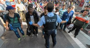 AFD : le retour des identitaires germaniques