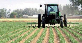 Agriculture : Pluies rassurantes pour la campagne 2018-2019