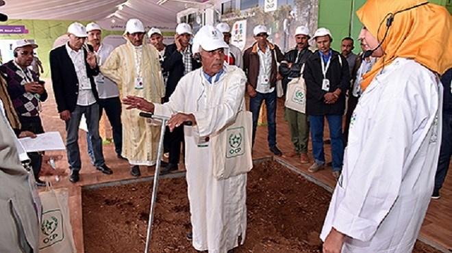 OCP : lancement d'une nouvelle initiative en faveur des agriculteurs