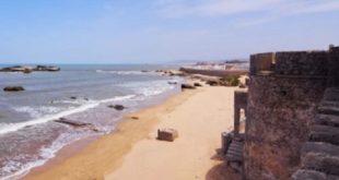Grande découverte à la plage d'Essaouira