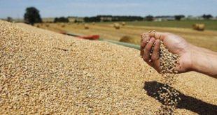Croissance dans la région MENA : La Banque mondiale inquiète pour le Maroc
