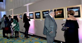 """Exposition à Marrakech autour de la """"réhabilitation du patrimoine culturel juif marocain : Synagogues et Cimetières''"""