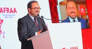 Transport aérien : le projet d'un marché unique africain prend forme (AFRAA)