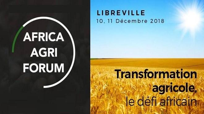 Africa Agri Forum : L'OCP Africa pour la promotion de l'agriculture en Afrique