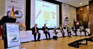 Énergies renouvelables : Le Maroc et l'Espagne renforcent leur coopération