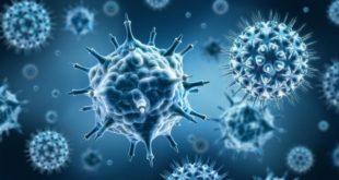 Grippe H1N1 : Le nombre de décès passe à neuf (ministre de la Santé)