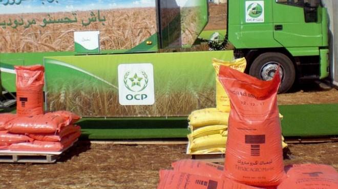 OCP-PanAfrican Fertilizer : Le gouvernement a donné son feu vert