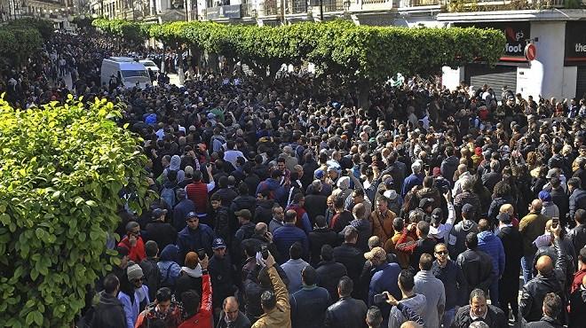 """Algérie : La France souhaite que l'élection réponde """"aux aspirations profondes"""" du peuple algérien"""