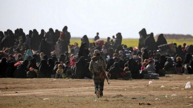 Daech : Le temps des redditions
