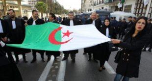 Algérie : Le Club des magistrats refuse de superviser les élections présidentielles