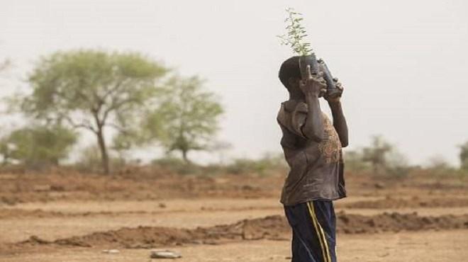 Sahel : Une économie moribonde