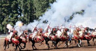 «Tbourida» : Candidature à la liste du patrimoine de l'UNESCO