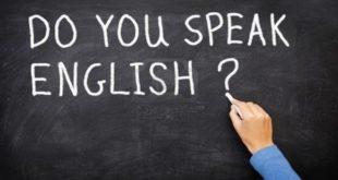 Langues enseignées et rôle de l'école : Les familles ont tranché
