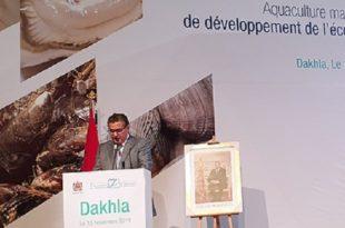 La région de Dakhla-Oued Eddahab s'accapare 60 % de la production aquacole nationale (Akhannouch)