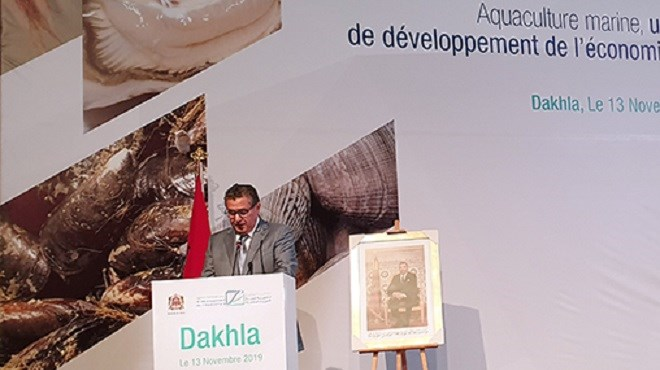 La région de Dakhla-Oued Eddahab s'accapare 60 % de la production aquacole nationale (Akhannouch)