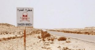 Sahara : Destruction de 96.727 mines terrestres