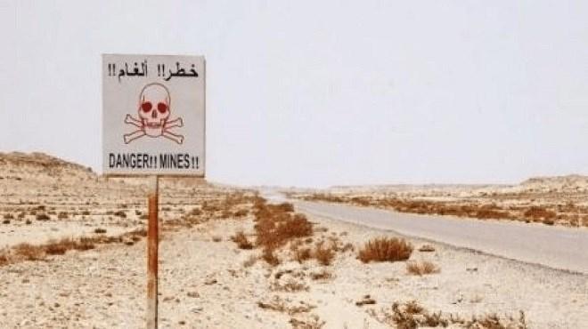 Sahara : Destruction de 96.727 mines terrestres