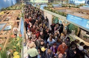 Agroalimentaire : Richesse et authenticité des produits marocains exposées à Berlin