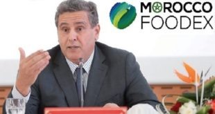 Morocco Foodex : Un Conseil d'Administration pour faire le point