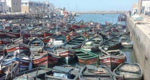 Ports du Maroc : Mais qui vole les embarcations et pourquoi ?