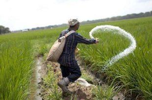 Campagne agricole 2019-2020 : Le Maroc indemnise les agriculteurs des zones sinistrées