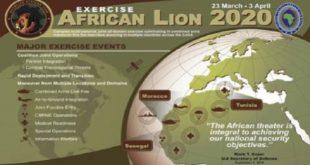 AFRICOM : L'exercice Militaire «African Lion 2020» annulé