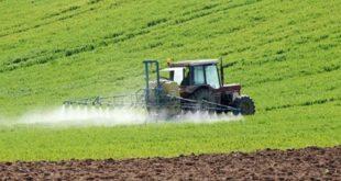 Maroc : Le déficit pluviométrique et la sécheresse menace l'agriculture et l'élevage