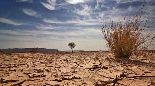 Sécheresse : Des mesures pour un monde agricole qui souffre !