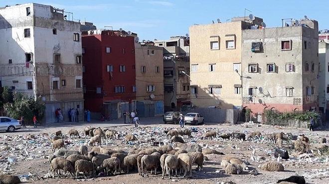 Confinement au Maroc : Le logement, une question de vie ou de mort