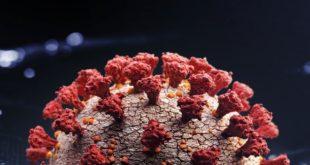 Coronavirus dans le monde : Chiffres et Bilan