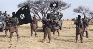 Terrorisme : Ces assoiffés de sang qui ne reculent devant rien, pas même le Covid-19