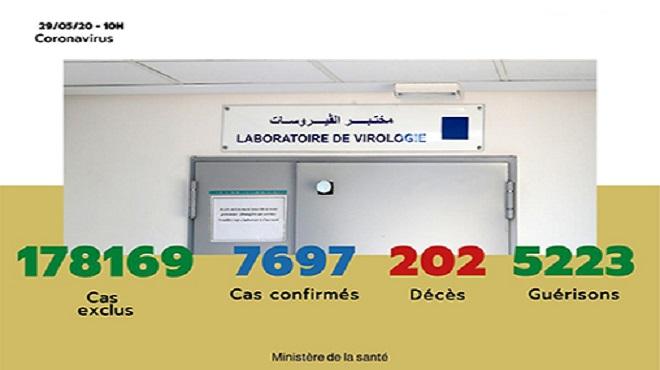 Maroc/ COVID-19 | 54 nouveaux cas confirmés, 7.697 au total