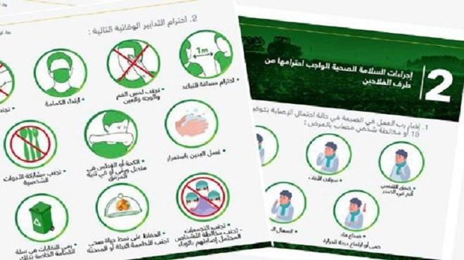 Le Ministère de l'Agriculture lance un ensemble d'outils adapté au contexte de la crise sanitaire