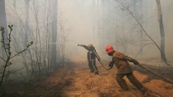 Mexique | Réduction de 10,4% d'incendies de forêt en avril