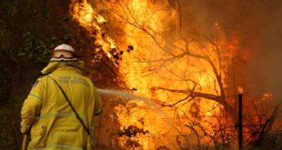 Portugal | 13 municipalités du sud présentent un risque d'incendie très élevé