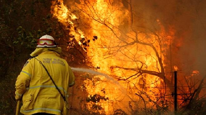 Portugal   13 municipalités du sud présentent un risque d'incendie très élevé