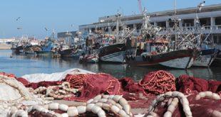 Ramadan | Hausse de 84% des Produits de la pêche côtière et artisanale