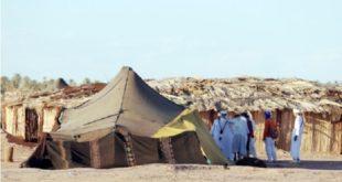 COVID-19 | Le thé sahraoui y laisse quelques plumes !