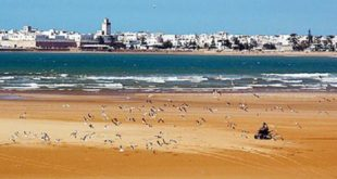 Essaouira/ INDH | 2.193 projets réalisés durant la période 2005-2018