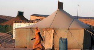 Financement militaire du polisario par l'Algérie | Un eurodéputé crève l'abcès