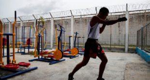 Kick-boxing | Session de formation à distance au profit des entraîneurs et arbitres