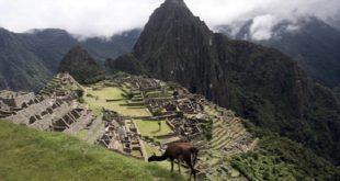 Pérou | Rencontres en visioconférence autour de la Semaine de biodiversité