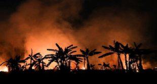 Portugal   Un dispositif spécial de lutte contre les incendies en milieu rural