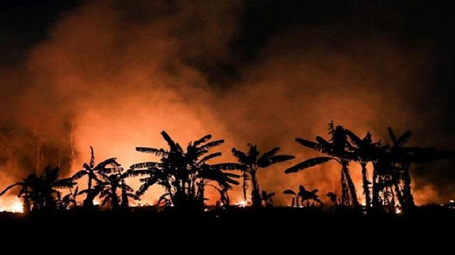 Portugal | Un dispositif spécial de lutte contre les incendies en milieu rural