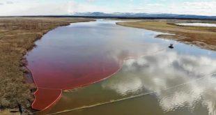 Marée rouge en Russie | Catastrophe écologique après une fuite de diesel