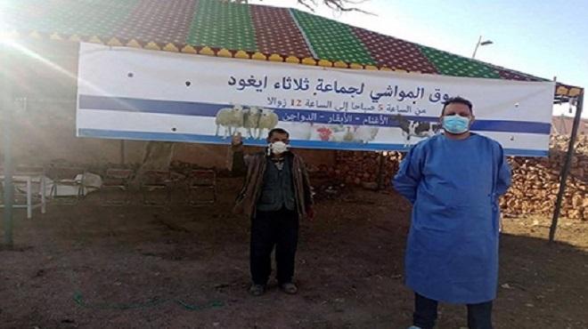 Youssoufia | Ouverture du souk hebdomadaire de la commune d'Ighoud aux éleveurs