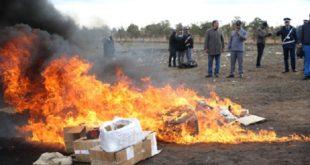 Agadir | Destruction d'une grande quantité de drogues et de cigarettes de contrebande
