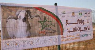Aid Al Adha | 36 marchés à bétail aménagés dans la région de Fès-Meknès